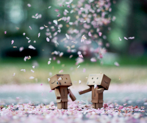 flowers, robot, and danbo image