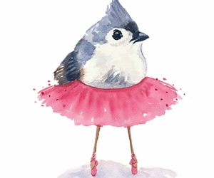 ballet, bird, and fat image