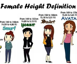 funny, height, and hobbit image