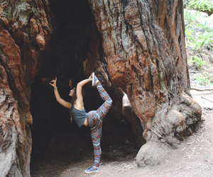 adventure, california, and gymnastics image
