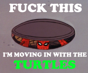 funny, ninja turtles, and spiderman image