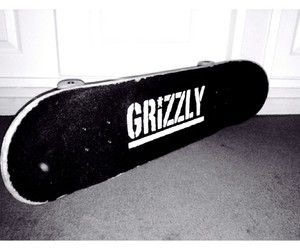 grizzly, skate, and skatepark image