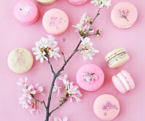 pink, flowers, and macaroons image
