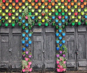 door, flowers, and moscow image