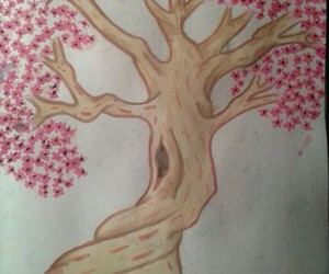 beautiful, blossom, and drawing image