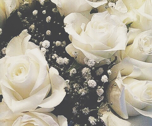 flowers, white, and beautiful . inspiration image