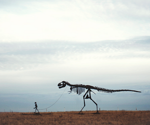 dinosaur, skeleton, and black and white image
