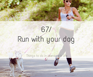 dog, fit, and run image