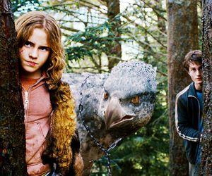 hermione granger, tumblr, and watson love image