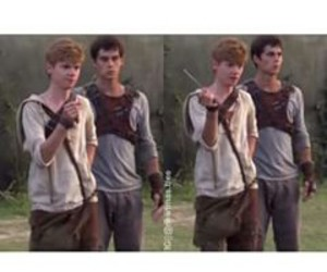 newt, thomas, and thomas brodie sangster image