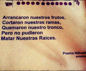 frases, Raices, and poema image
