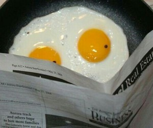funny, eggs, and lol image