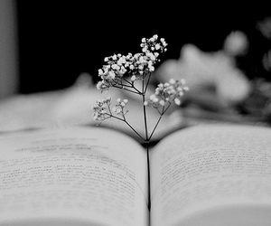 book and flowers image
