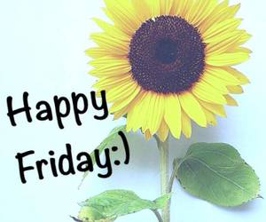 flowers, friday, and yellow image