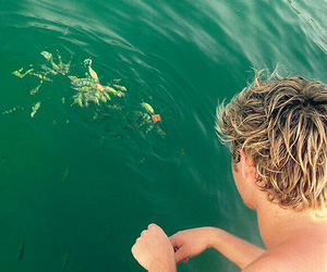 blond boy, niall, and niall horan image