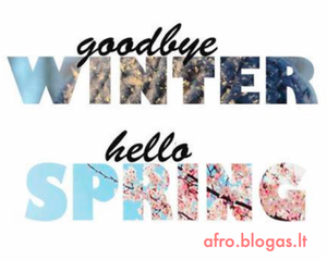 spring and winter image