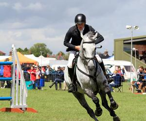 competition, show jumping, and horse image