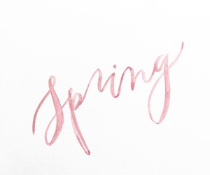spring, pink, and quotes image