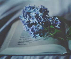 flowers, book, and blue image
