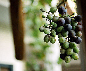 asia, bunch, and grapes image