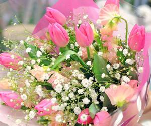 flower, flowers, and spring image