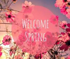 spring, pink, and welcome image