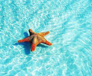 summer, sea, and stars image