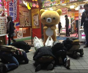 japan, rilakkuma, and funny image