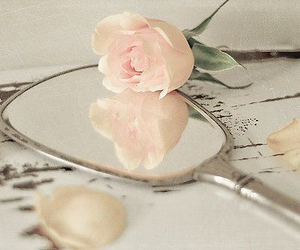 rose, mirror, and pink image
