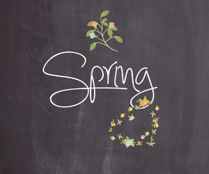 spring, nature, and beautiful image