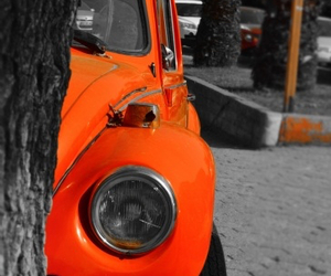 beetle, fusca, and nice image