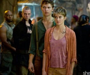 insurgent, Shailene Woodley, and divergent image