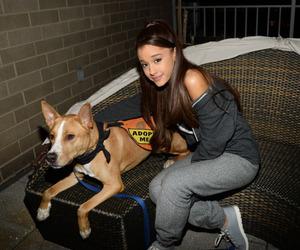 ariana grande and dog image