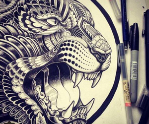 drawing, draw, and tiger image