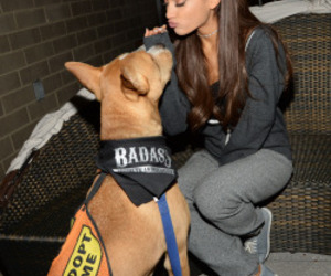dog, rescue, and ariana grande image