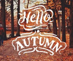 autumn and hello image