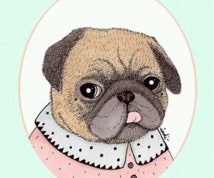 drawing, kawaii, and pug image