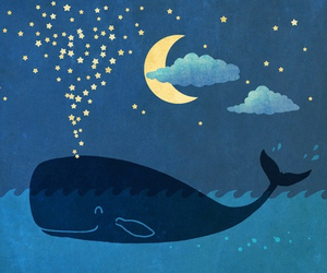 stars, whale, and night image