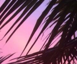header, pink, and tumblr image