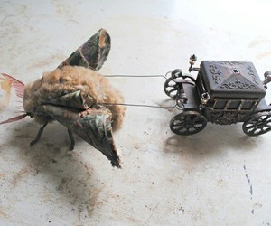moth and toy image