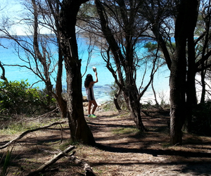 beach, blue, and bush image