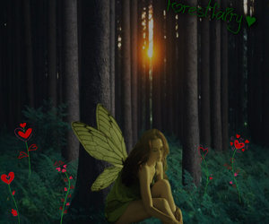 fairy, flowers, and forest image