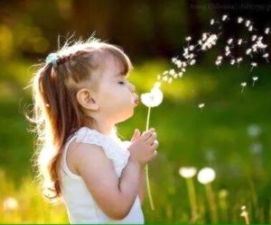 dandelion, portrait, and cute image