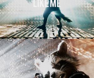rocket raccoon image
