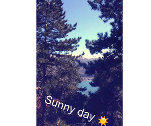 beautiful, spring, and sunny day image