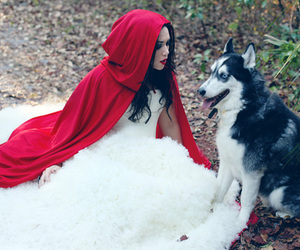 dog, red, and red riding hood image