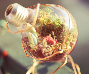 nature, lightbulb, and flowers image