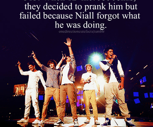 one direction, facts, and zayn malik image