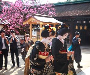 debut, geiko, and geisha image