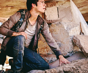 Hot, the maze runner, and tmr image